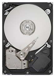 Seagate ST31000528AS