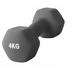 Atemi AD-01 4 кг