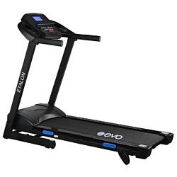 Evo Fitness Etalon