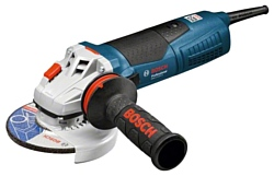 Bosch GWS 17-125 Inox (060179M002)
