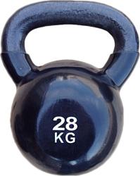 Protrain TA-2401-28 28 кг