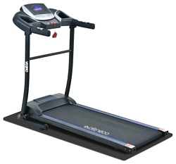 Evo Fitness Omega