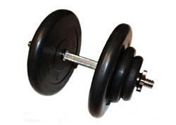 Атлет 29,5 кг