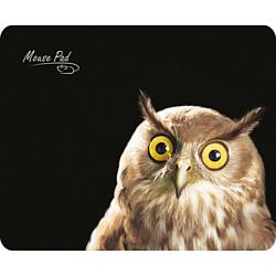 Dialog PM-H15 Owl