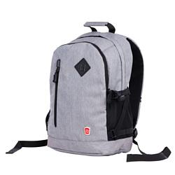 POLAR 16015 20.5 серый