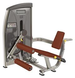 Bronze Gym E-013