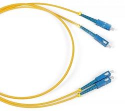 Patch cord Duplex SC - SC 1 м