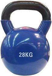Protrain PR-VK-28 28 кг