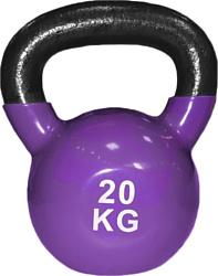 Protrain TA-2401-20 20 кг