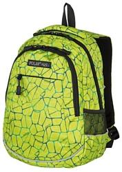 POLAR 18302 зеленый