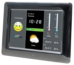 Braun DigiFrame 800 Weather