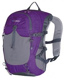 Husky Spiner 20 violet/grey