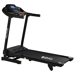 Evo Fitness Vector
