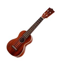 Sigma Guitars SUM-2S+