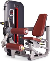 Bronze Gym MT-013