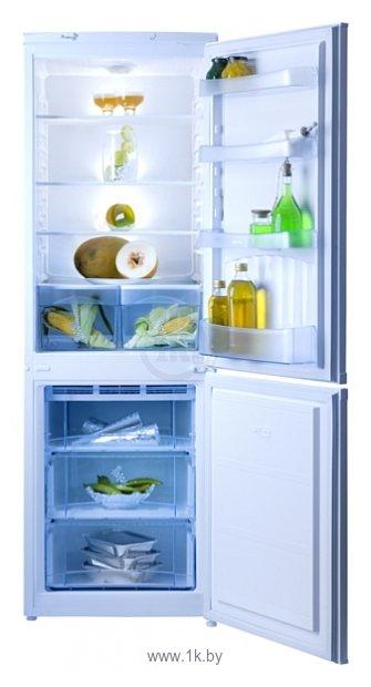 Холодильники. холодильник NORD НОРД NRB 300-012. Интернет-магазин бытовой