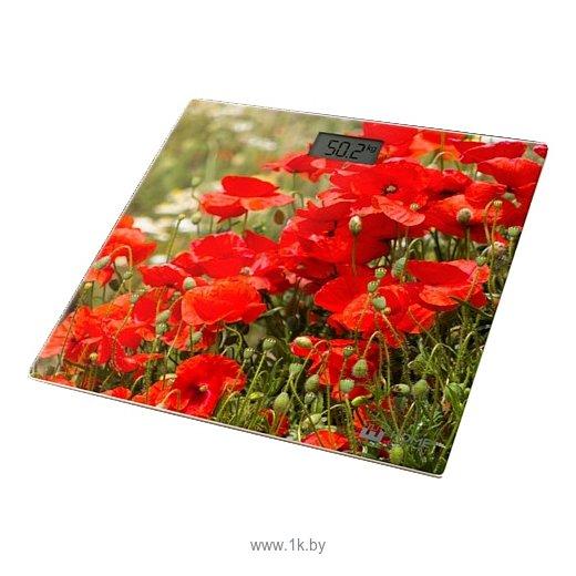 Фотографии Home Element HE-SC906 Red Poppies