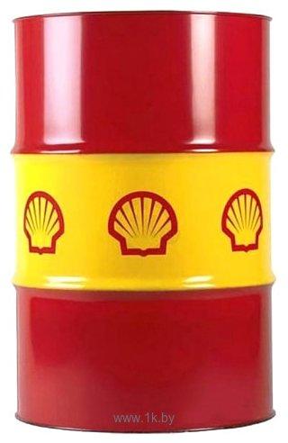 Фотографии Shell Rimula R6 M 10W-40 209л