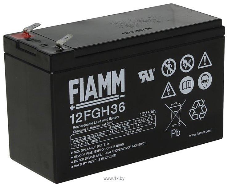 Фотографии FIAMM 12FGH36