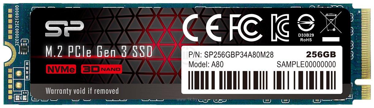 Фотографии Silicon Power P34A80 256GB SP256GBP34A80M28