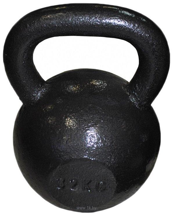 Фотографии Protrain 12243-32 32 кг