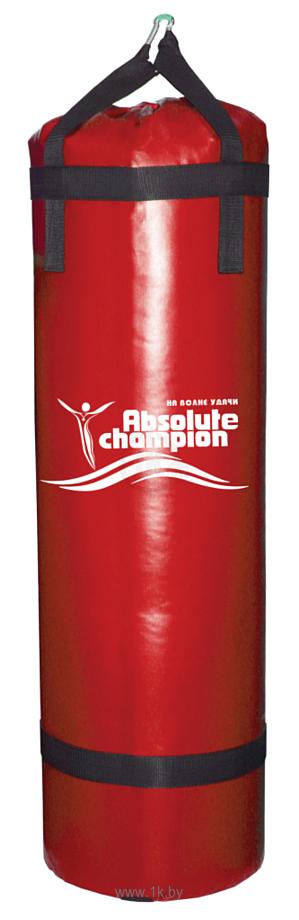 Фотографии Absolute Champion Стандарт плюс 15 кг (красный)