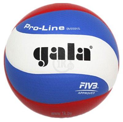 Фотографии Gala Pro Line (BV5591S)