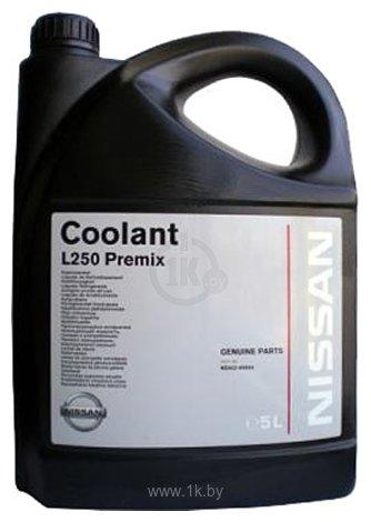 Фотографии Nissan Coolant L248 Premix 5л
