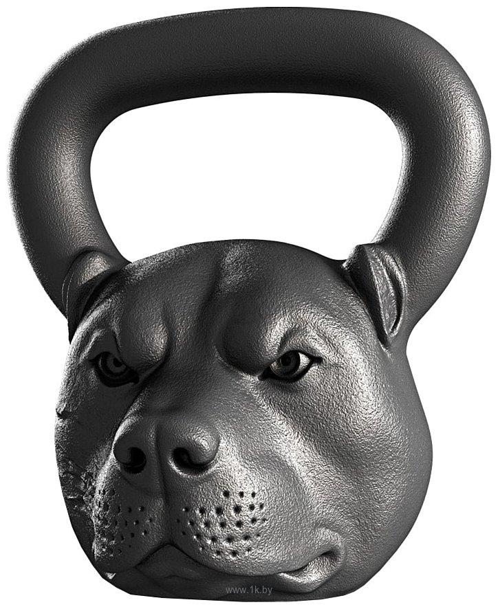 Фотографии Iron Head Питбуль 16 кг