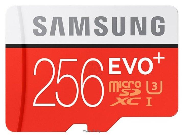 Фотографии Samsung microSDXC EVO Plus 95MB/s 256GB + SD adapter