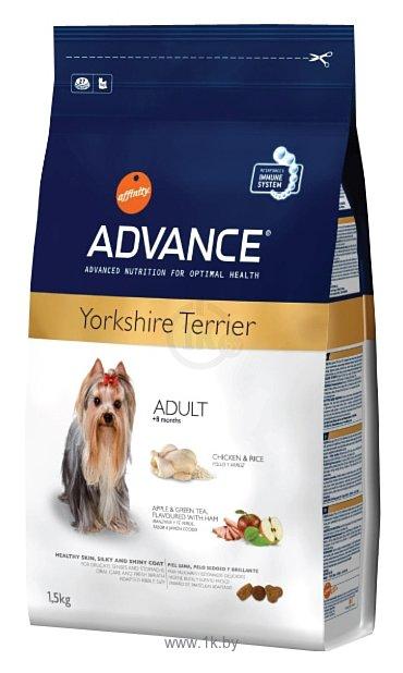 Фотографии Advance Yorkshire Terrier Adult курица и рис (1.5 кг)