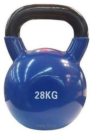 Фотографии Protrain PR-VK-28 28 кг