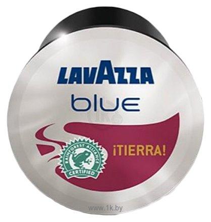 Фотографии Lavazza Tierra капсульный