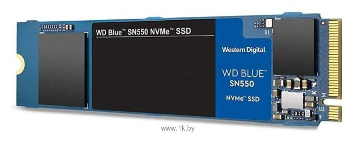 Фотографии Western Digital WD Blue SN550 500 GB (WDS500G2B0C)