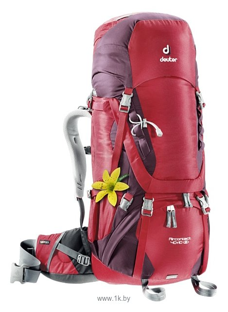Фотографии Deuter Aircontact 40+10 SL red (cranberry/aubergine)