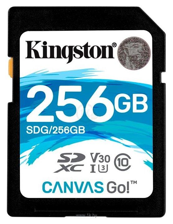 Фотографии Kingston SDG/256GB