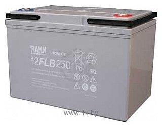 Фотографии FIAMM 12FLB250P 0