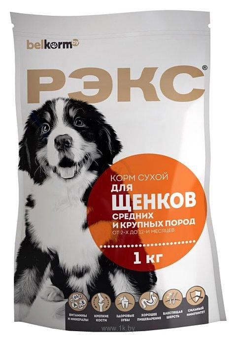 Фотографии РЭКС Для щенков средних и крупных пород сухой (10 кг)