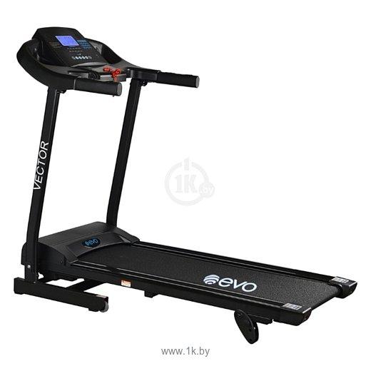 Фотографии Evo Fitness Vector