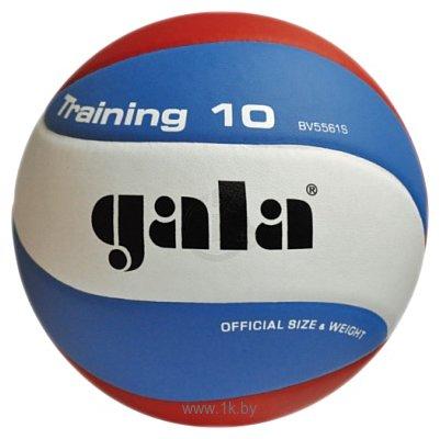 Фотографии Gala Training 10 (BV5561S)