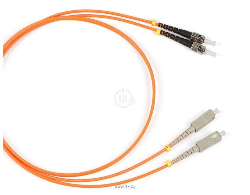 Фотографии Patch cord Duplex ST - SC 1 м