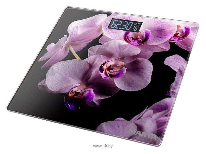 Фотографии Marta MT-1676 Орхидея