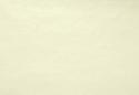 Голдоптима Диана 02 (венге/кожзам белый)
