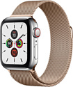 Apple Watch Series 5 40mm GPS + Cellular Stainless Steel Case with Milanese Loop