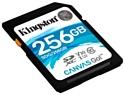 Kingston SDG/256GB