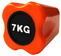 Original FitTools FT-BDB-7 7 кг