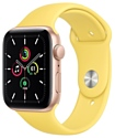 Apple Watch SE GPS 44mm Aluminum Case with Sport Band