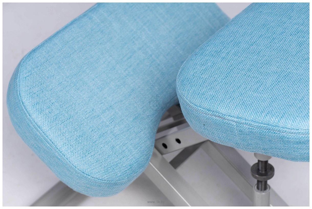 Фотографии ProStool Comfort (голубой)