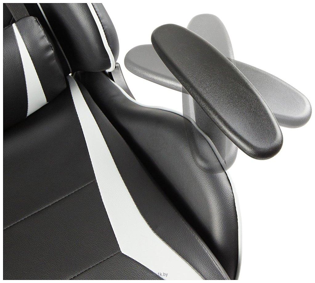Фотографии Calviano Mustang (черный/белый)