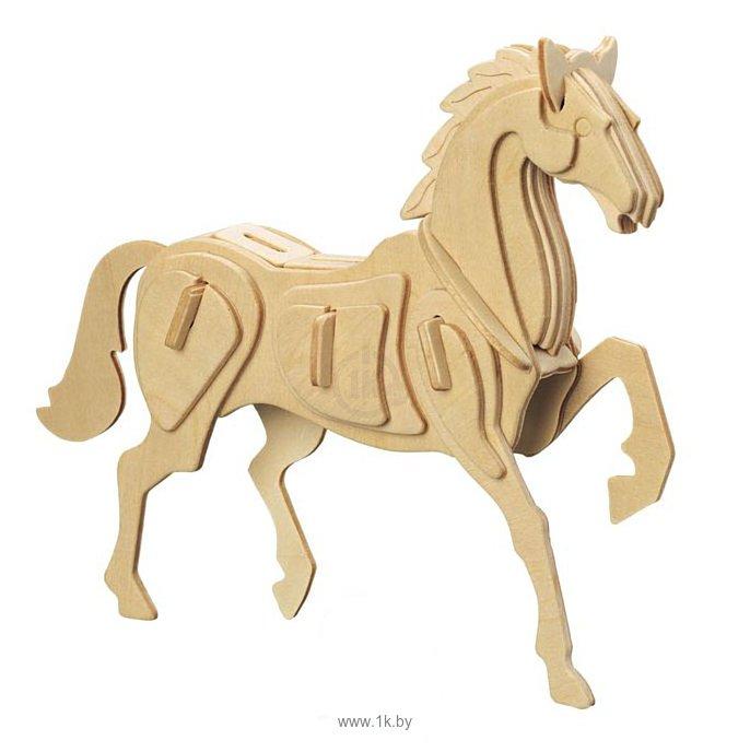 Фотографии Чудо-Дерево Лошадь